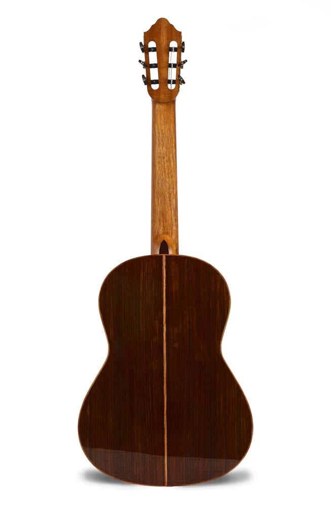 guitar-back_0175